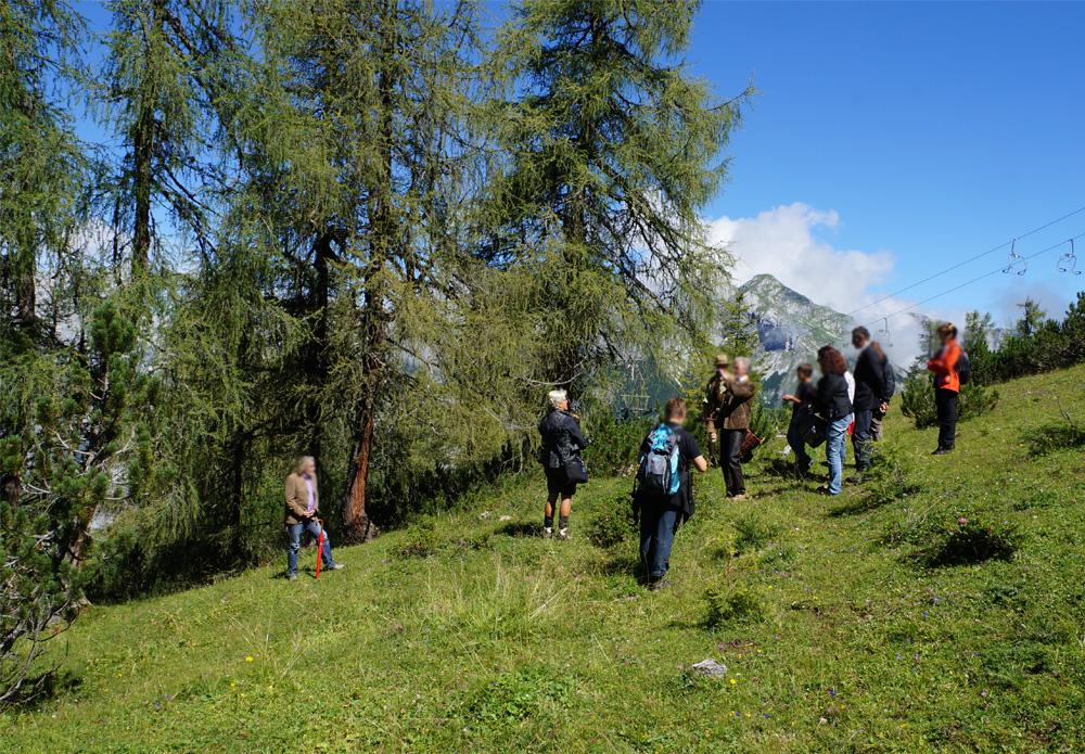 Verabschiedung Bergbestattung Naturbestattung GmbH