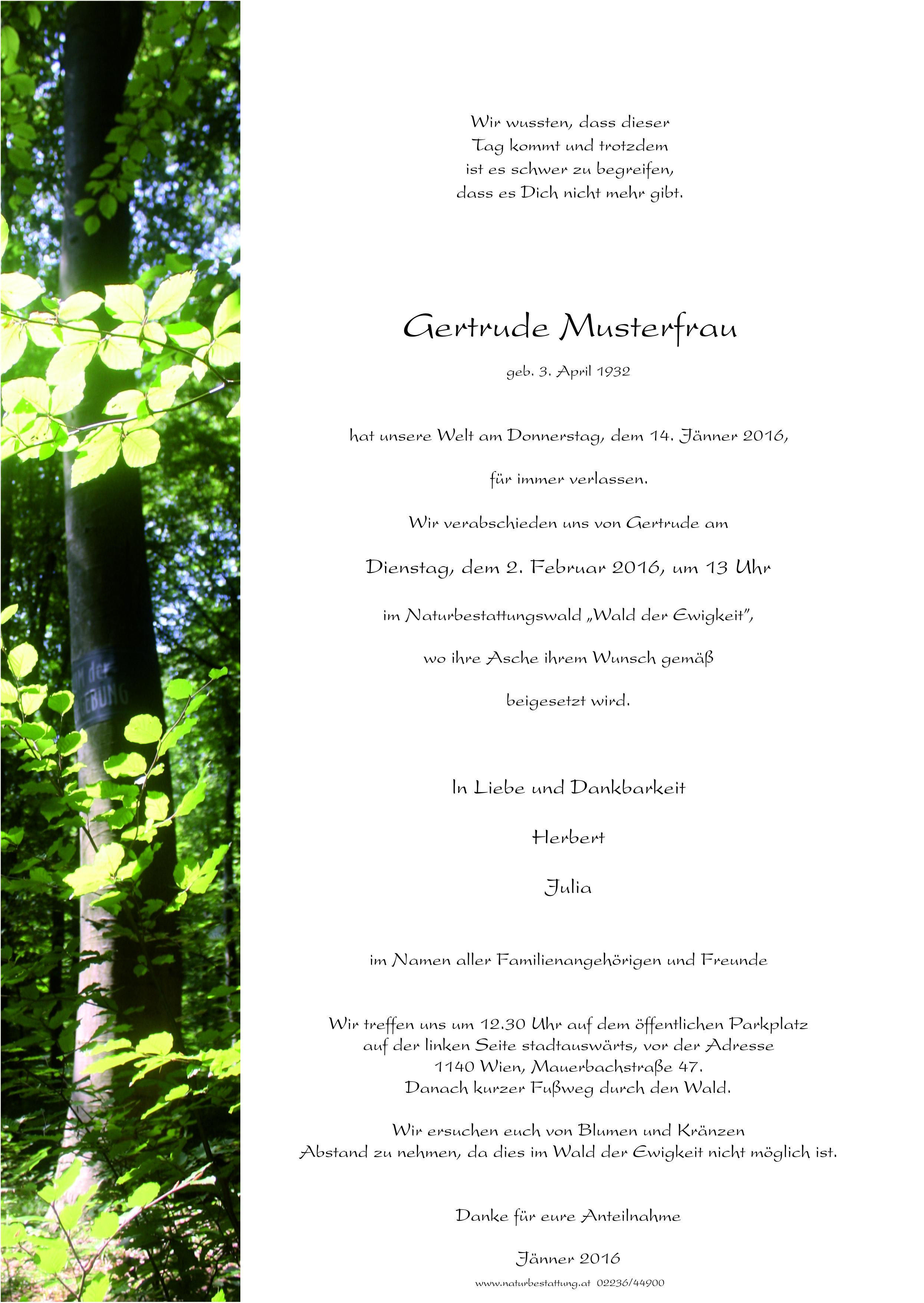 16 Parte Wald Muster_Wald der Ewigkeit Naturbestattung GmbH
