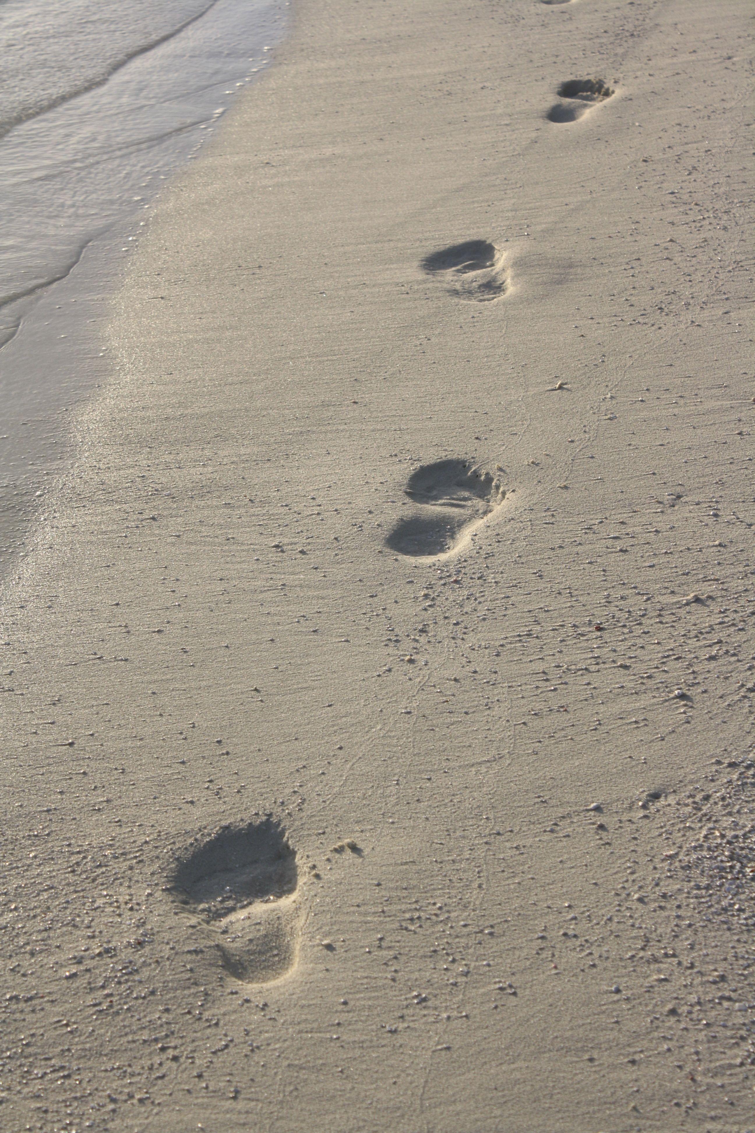 Fußspuren im Sand Naturbestattung GmbG