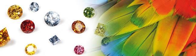 Tierdiamant Österreich Asche zu Diamant Naturbestattung GmbH