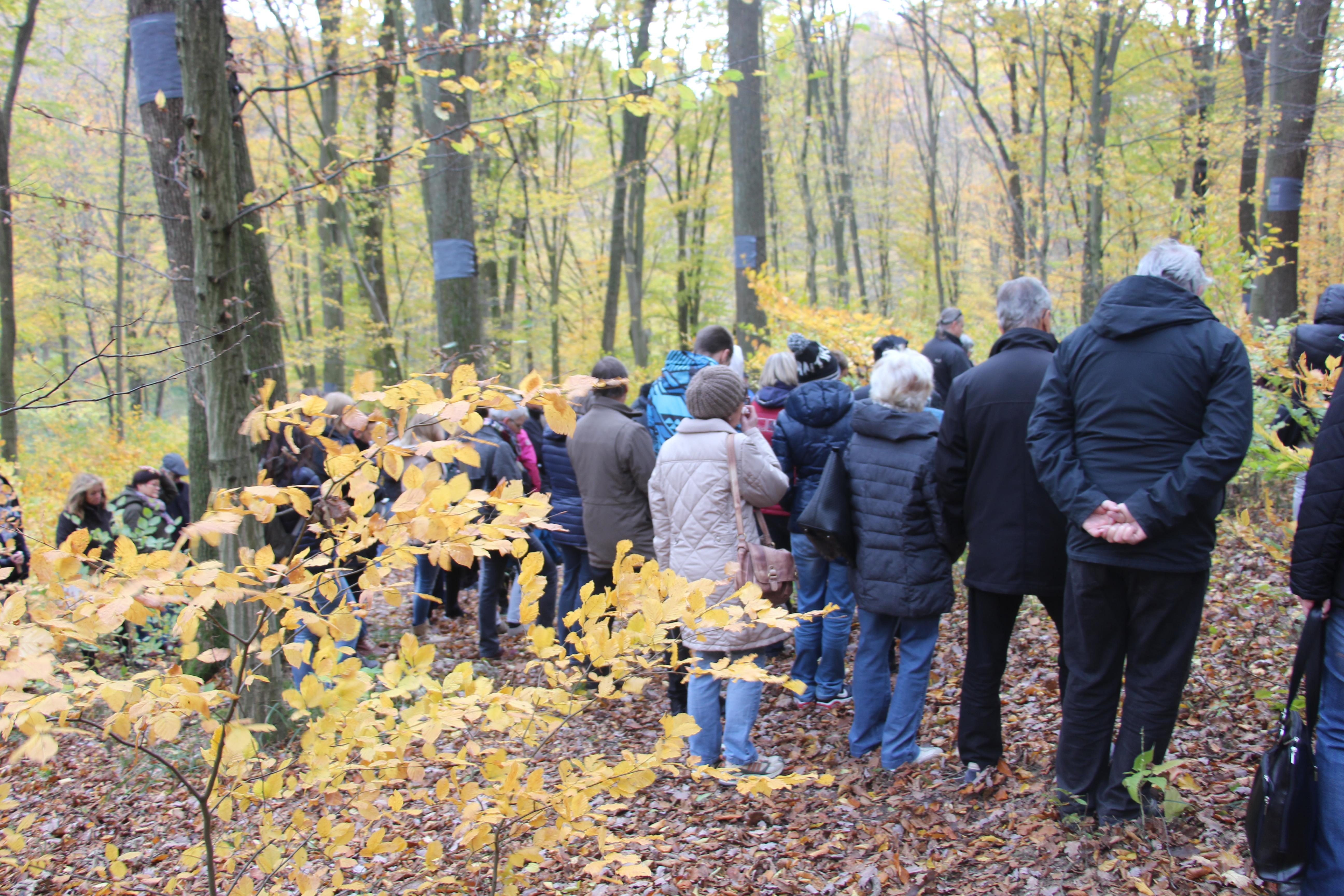 Gedenkfeier im Wald der Ewigkeit Allerheiligen Allerseelen Naturbestattung Gmbh Zadrobilek Baumbestattung Waldbestattung