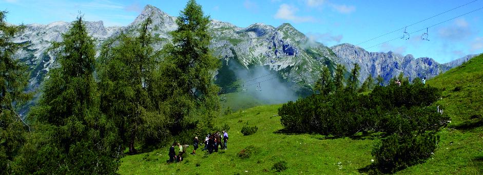 Bergbestattung auf der Almwiese in Salzburg Naturbestattung GmbH Zadrobilek